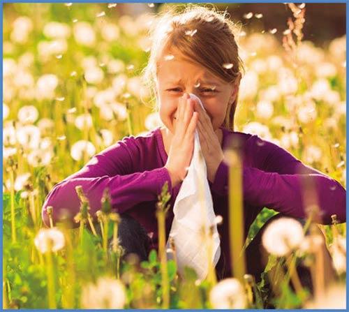 Ефективна защита от алергии с филтър за нос НОСК