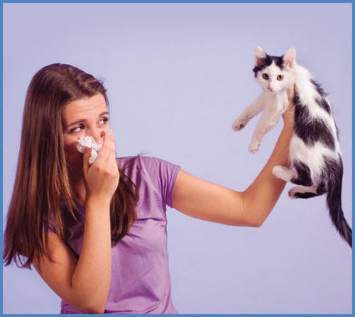 Предпазва от вдишване на косми от домашни животни